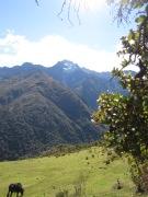 Vista del Pico Bolivar desde La Aguada