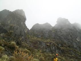 Picachos Los Jelambis, acercamiento